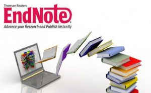 endnote style