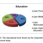 education level by respondents