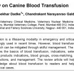 canine blood transfusion